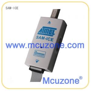 增强型SAM-ICE仿真器