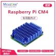 树莓派Computer Module CM4 散热片 Cooler带WiFi孔 支持四核满载 11mm